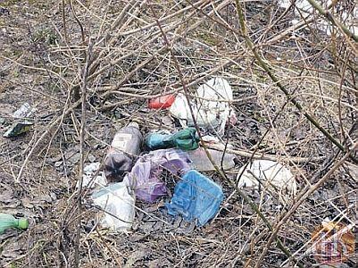 «Чистый берег» – в Смоленске